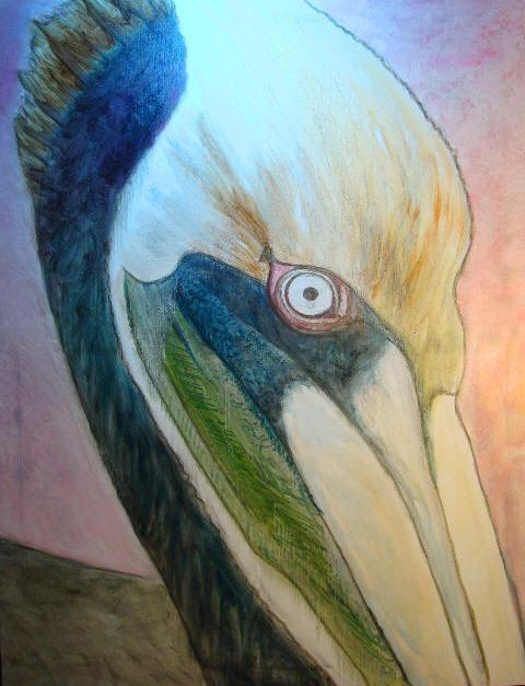 Pelican Underpainting